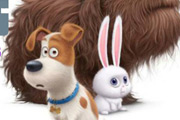 game Secret Life of Pets 6 Diff
