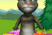 game Talking Tom Picnic